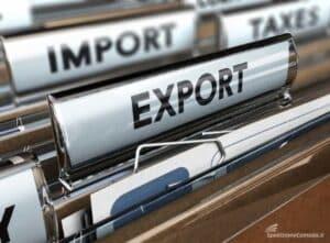Dichiarazione di libera esportazione